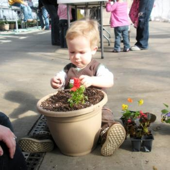 Kids plant pretty flowers for Mother's Day