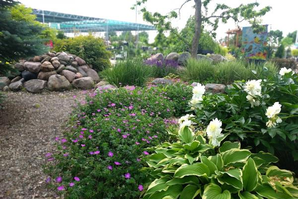 Perennial garden at Drummers Garden Center and Floral